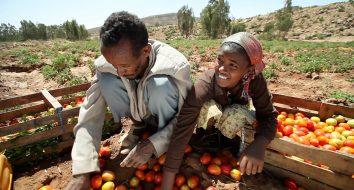 Migrazione, imprenditorialità agricola e sviluppo sostenibile